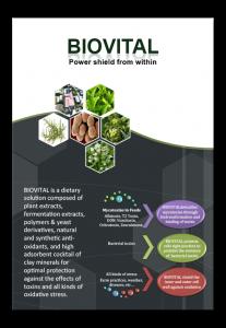 Brochure Biovital2